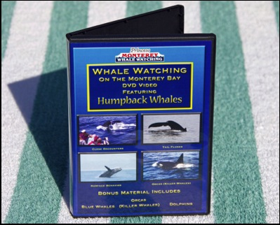Monterey Whale Watching DVD